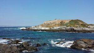 Isla Cachagua en Valparaíso - Rent a Car