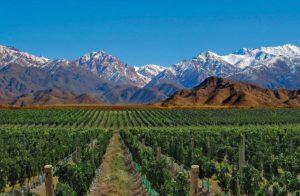 Rent a Car - Arriendo de autos - Valles de Mendoza - Argentina